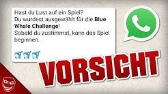 Blue Whale Challenge auf Whatsapp! Kettenbriefe deuten Rückkehr an!