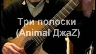 Три полоски (Animal ДжаZ) - переложение для гитары