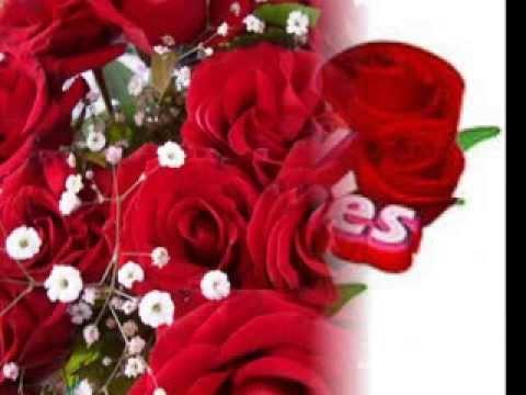 Sevgililer günün mübarek sevgilim 14...