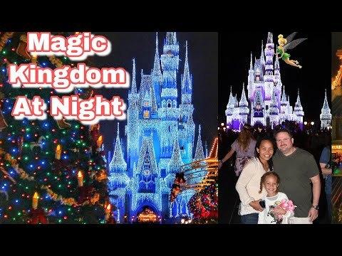 Magic Kingdom at Night | Family is Love