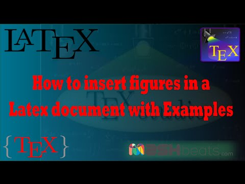 Latex insert multiple documents