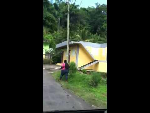 Drive in Dominica