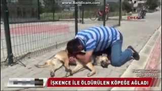 İşkenceyle Öldürülen Köpeğe Hıçkıra Hıçkıra Ağlayan Adam