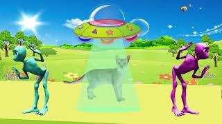 учить животных для малышей - животные для детей - видео развивающее #12