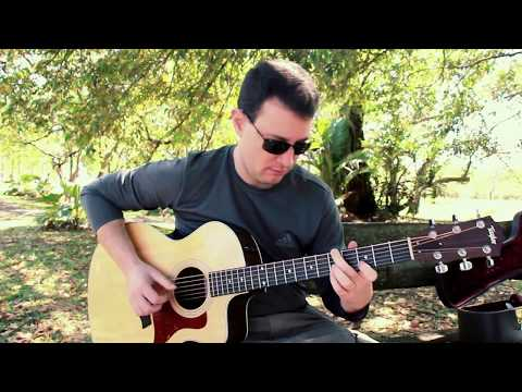Acoustic Blues in D (King Kong goes to Tallahassee)