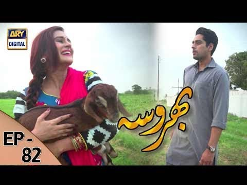 Bharosa - Ep 82 - 31st August 2017 - ARY Digital Drama