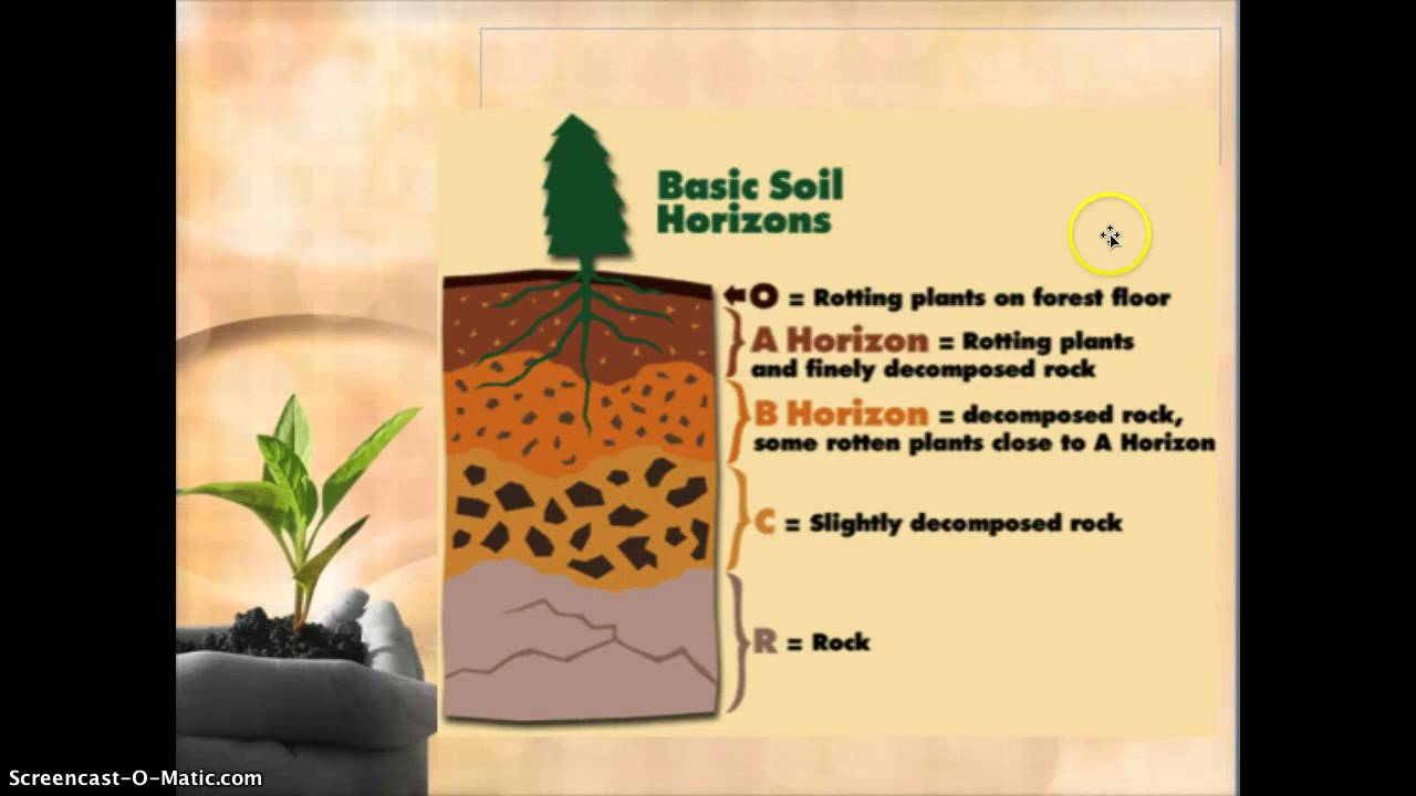 Soil components video notes youtube for Four main components of soil
