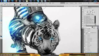 Conny | GFX Heavy Metal Tiger Speedart [OConnorDesigns] WAY➚