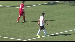 Pianese-Castelvetro 2-1 Serie D Girone D