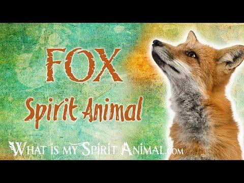 fox-spirit-animal-|-fox-totem-&-power-animal-|-fox-symbolism-&-meanings