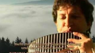 Wolfgang Niegelhell - Der einsame Hirte