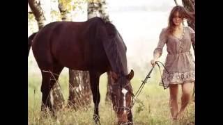 Гимн Конного Спорта   конный спорт и про лошадей