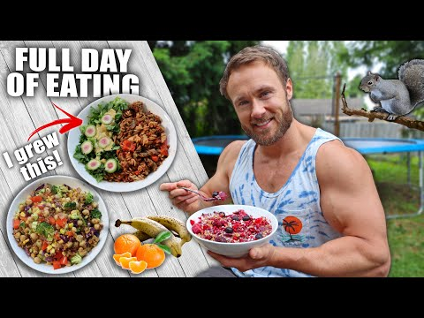 full-day-of-eating-good-vegan-meals-&-adventure