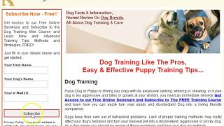 ***FREE  Puppy  Obedience Training Tips-FREE Mini-Course***