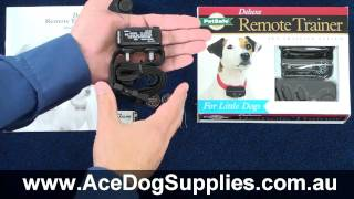 Remote Trainer Review - Petsafe Pdldt-305
