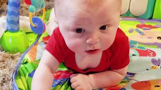Baby and Cat Fun and Fails   Funny Baby Video GogoMeomeo #01