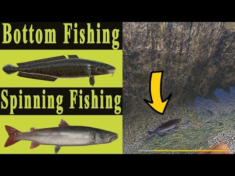 Spinning & Bottom Strategy | Belaya River[Russian Fishing 4]