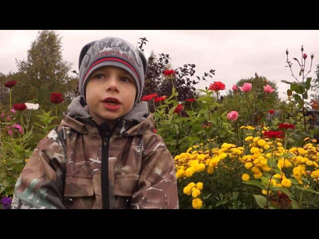 Александр Рушников читает произведение «Полевые цветы» (Бунин Иван Алексеевич)