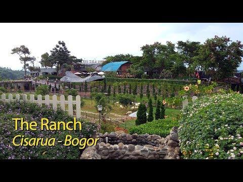 berkuda-di-the-ranch-cisarua---bogor