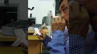Something Nasty in His Nose || ViralHog