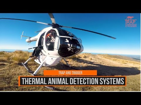 Aerial Tahr And Wallaby Containment For Conservation