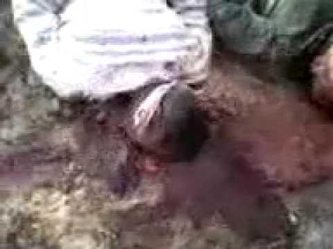 Libya  war crime: #Feb17   Evidence of Libya torture by rebels 2/3 [libyasos]