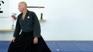 Moving forward, Ninjutsu sabaki, Mae, basic - Ninjutsu techniques for Akban wiki
