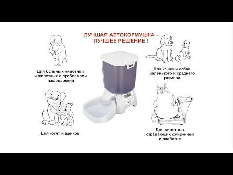 Автокормушка для кошек и собак CAT MATE C3000. Пример настройки на одно кормление в сутки.
