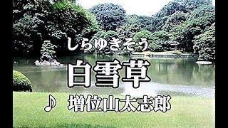 増位山太志郎 - 白雪草