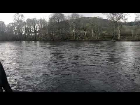Dunkeld House Salmon Fishing