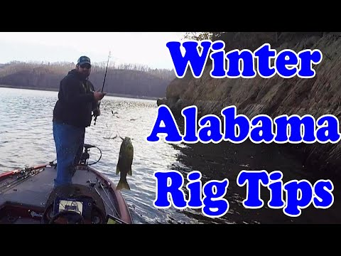 Winter Alabama Rig Tips