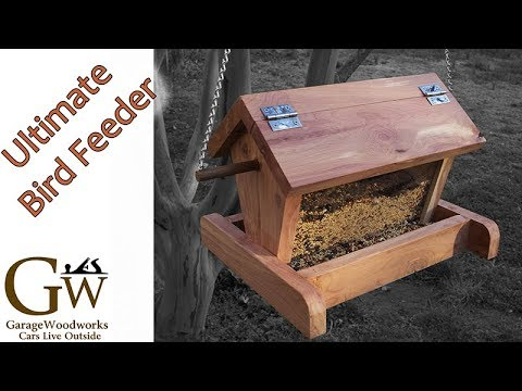 The Ultimate Bird Feeder