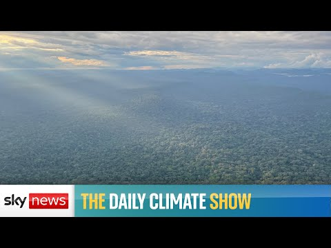 The Daily Climate Show: Reporting from Gabon