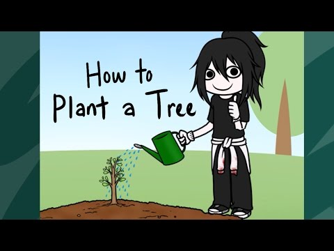 Cweepypasta - How To Plant A Tree