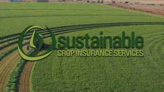 Sustainable Crop Insurance Intro
