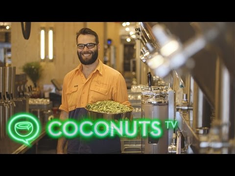 Little Creatures Kennedy Town | Hong Kong's newest craft brew | Coconuts TV