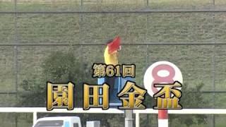 【園田競馬】園田金盃2018 レース速報