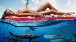 Most SHARK INFESTED Beaches!