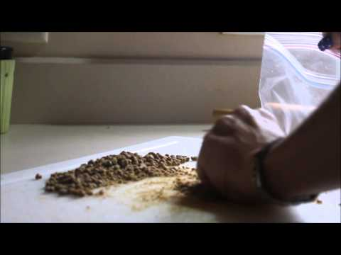 Weaning To Puppy Food