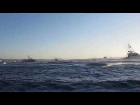 Los Cabos Bisbee's Offshore Tournament 2014