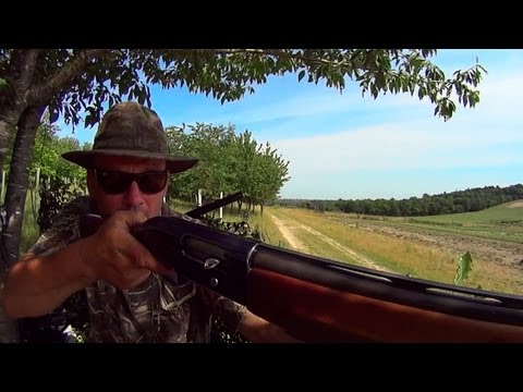 The Shooting Show -- 100 pigeons with Geoff Garrod and rifle zeroing tips