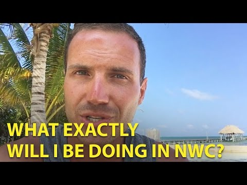 National Wealth Center - What Exactly Will I Be Doing?
