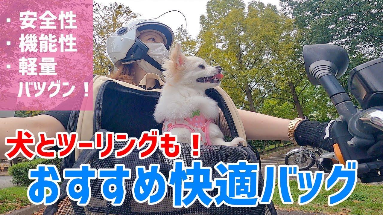 女性も楽々♪犬と一緒にバイクでツーリングに行けるバッグが便利過ぎた!