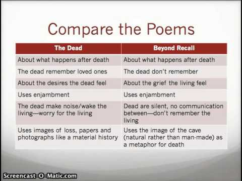 Introduction to Compare and Contrast Essay-