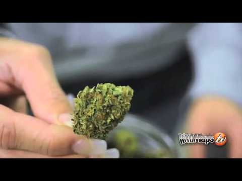 Long Beach Green Room Dispensary Tour