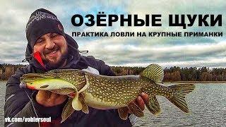 видео Весенняя ловля на больших озерах