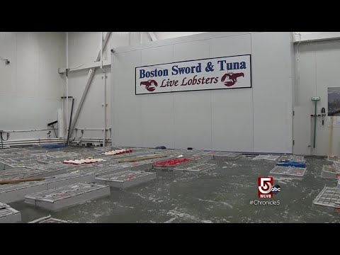 Keeping The Seafood Industry Alive