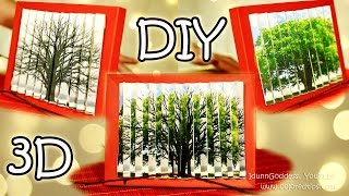 DIY 2 pictures in 1 - How To Make 3D Optical Illusion Picture Tutorial