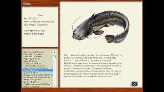 Русская рыбалка 2.4 Ахтуба.Сом