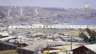 #MunicipiosxLaBiodiversidad Cartagena